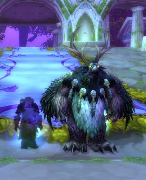 Boomkin and Kneecap Melter